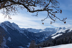 Montan@as austríacas. Saalbach Fotografía de archivo libre de regalías