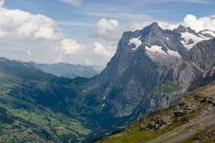 Montan@as de Bernese en verano Fotografía de archivo libre de regalías