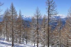 Montan@as de Carinthia-Villach imagen de archivo