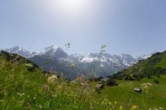 Montan@as en Suiza Fotografía de archivo libre de regalías