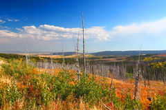 Montana Autumn Scenery stock photos