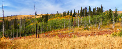 Montana Autumn Scenery. Beautiful autumn scenery of Glacier County in rural Montana Royalty Free Stock Photos