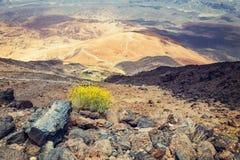 Montana Blanca i den Teide nationalparken, Tenerife Arkivfoto