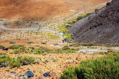 Montana Blanca i den Teide nationalparken, Tenerife Arkivbilder