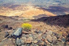 Montana Blanca in Nationalpark Teide, Teneriffa Stockfoto