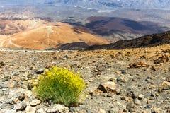 Montana Blanca, Teide National Park, Tenerife, Canary Islands, Spain Stock Images