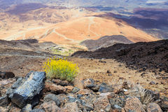 Montana Blanca, Tenerife, Canary Islands, Spain Stock Photography