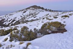 Winter in Teide National Park Tenerife Canary Islands royalty free stock images