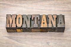 Montana in der Weinleseholzart Lizenzfreie Stockfotografie