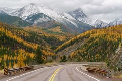 A Montana Fall. Autumn in Montana, Western United States Royalty Free Stock Photography