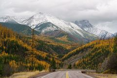 A Montana Fall. Autumn in Montana, Western United States Royalty Free Stock Photo