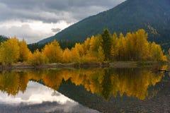 A Montana Fall. Autumn in Montana, Western United States Stock Photo