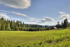Montana farm landscape Stock Photography
