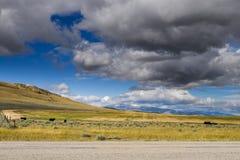 Montana Farmland imagen de archivo