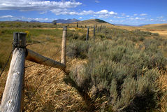 Montana Fence. High Desert, Montana Royalty Free Stock Image