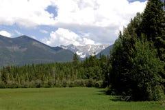 montana fjäder Arkivbilder