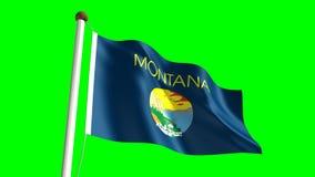 Montana flag. Seamless  green screen stock video