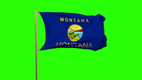 Montana flag with title waving in the wind. Loops sun rises style stock video