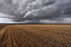 Montana after harvesting Royalty Free Stock Photo