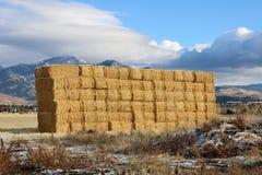 Montana Hay Wall lizenzfreie stockfotografie