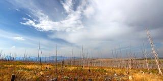 Montana jesieni sceneria obraz royalty free