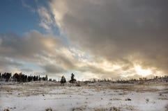 Montana Landscape fotografia de stock