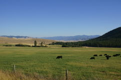 Montana Landscape Royalty Free Stock Photos