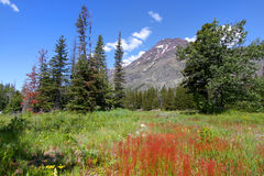 Free Montana Landscape Royalty Free Stock Photo - 29641895