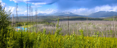 Montana landscape Royalty Free Stock Images