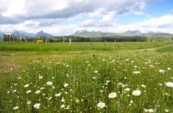 Montana Landscape Stock Photos