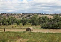Montana Landscapes Stockfoto