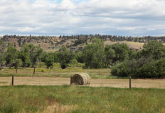 Montana Landscapes. Montana mountains and hay fields Stock Photo