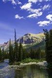 Montana Mountain Royaltyfri Fotografi