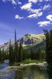Montana Mountain. A beautiful mountain and stream bed in Montana Royalty Free Stock Photography