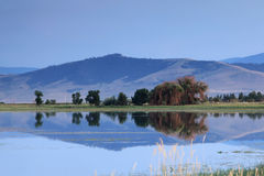 Montana Mountains Stock Photos