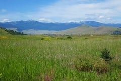 Montana Mountains Fotografia de Stock