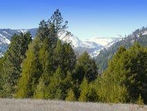 Montana Mountains in de Lente stock afbeelding