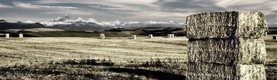 Montana Mountains and Farm. With Haybales Royalty Free Stock Photos