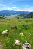 Montana Mountains and Hills Royalty Free Stock Photography