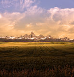 Montana Mountains Landscape. Montana Mountains and Fields Landscape Royalty Free Stock Photography
