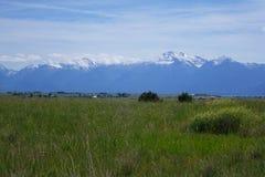Montana Mountains Royalty Free Stock Photo