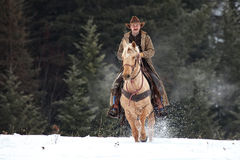 Montana ranchägare i whitefishen som gör hans rundor royaltyfri foto