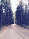 Montana royalty free stock photo