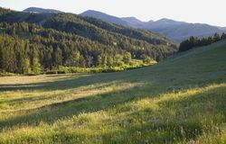 Montana spring Stock Photo