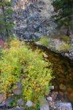 Montana Stream e Rocky Cliffs foto de stock royalty free
