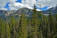 Montana USA Royalty Free Stock Photography