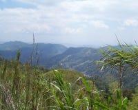 montana utsikt royaltyfria foton