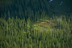 Montana Wilderness Foto de archivo