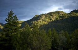 Montana Wilderness Foto de archivo libre de regalías