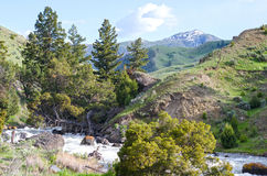 Montana& x27; s-Natur-Schönheit Lizenzfreie Stockfotos